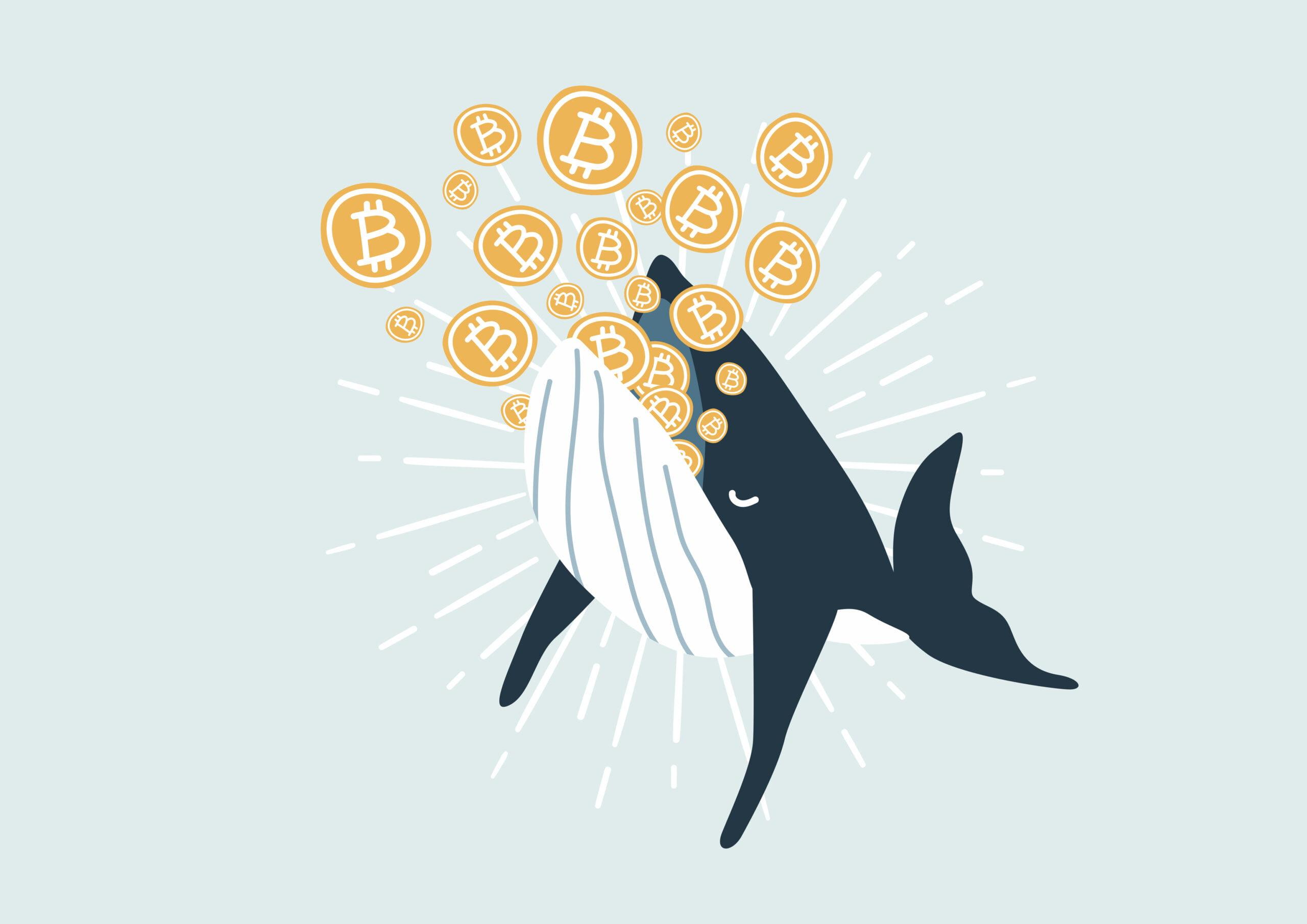 Bitcoin în perspectivă optimistă, cu un nou suport pentru 13k USD - Criptoeconomia