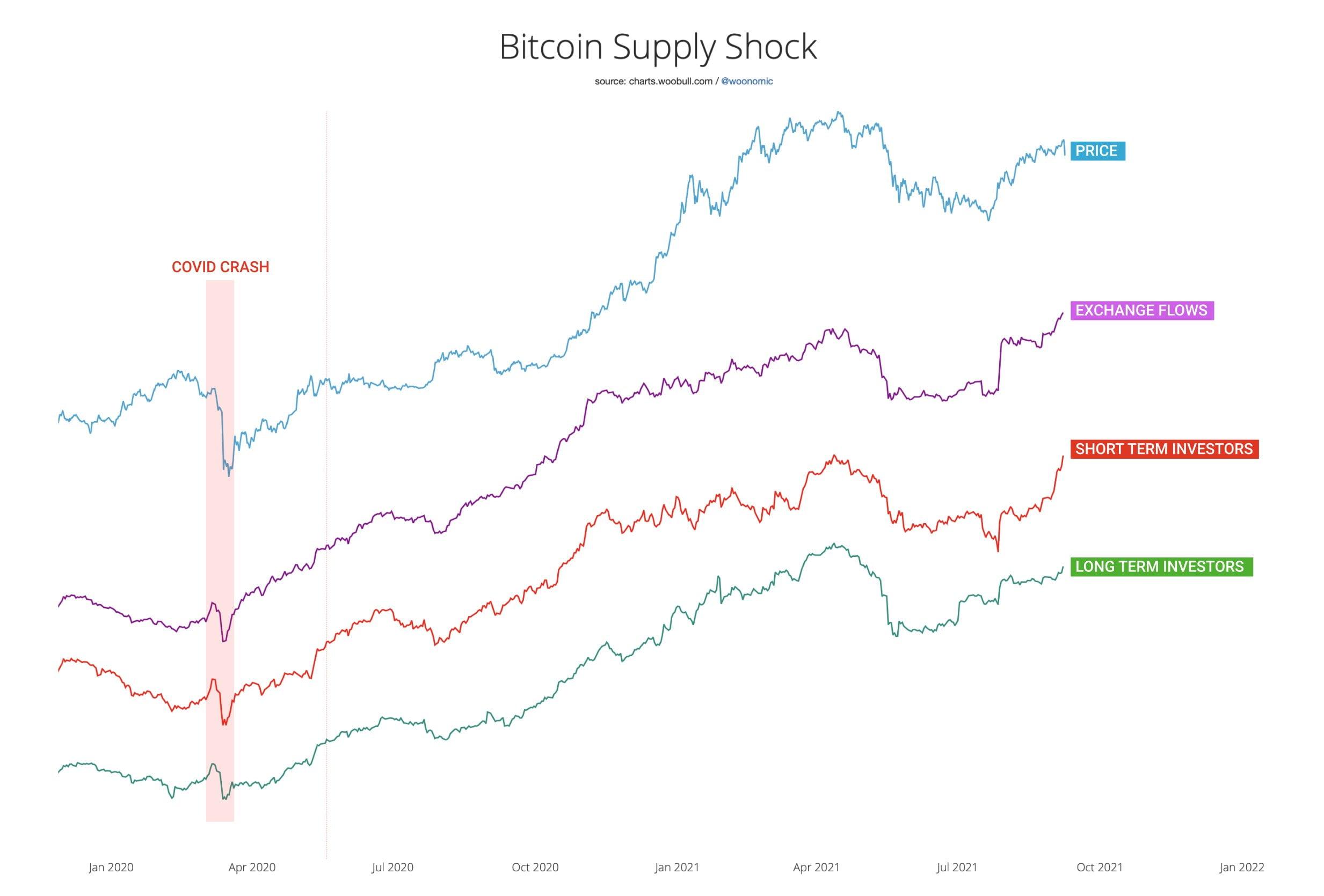 Cine a vândut? Nu HOLDerii! - Ce spun datele despre scăderea Bitcoin?